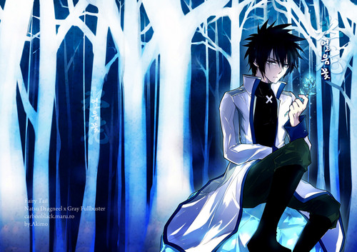 Fairy Tail - anime Photo