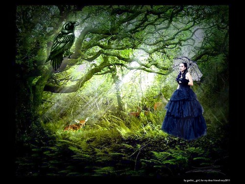 Gothic woods ♥ - gothic Wallpaper