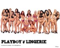 Love it - playboy photo