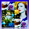 Marcia Cross- Perfect&lt;3 - desperate-housewives fan art
