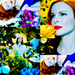Marcia Cross- Perfect<3 - desperate-housewives icon