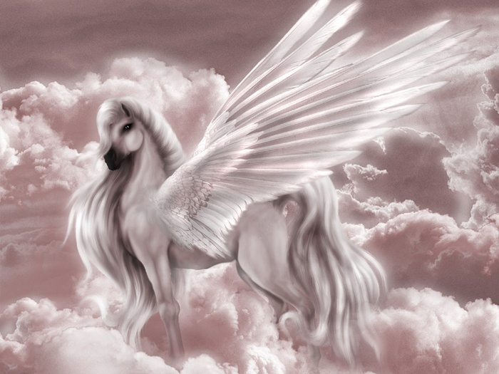 Mythical Creatures Images Pegasus Wallpaper And Background Photos