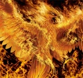 Phoenix - mythical-creatures photo