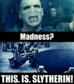This. Is. Slytherin. - death-eaters photo