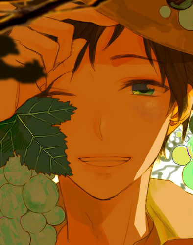 Hetalia Spain fond d'écran with animé called Through The grain de raisin, raisin Vines