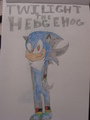 Twilight the Hedgehog - boy-sonic-fan-characters photo