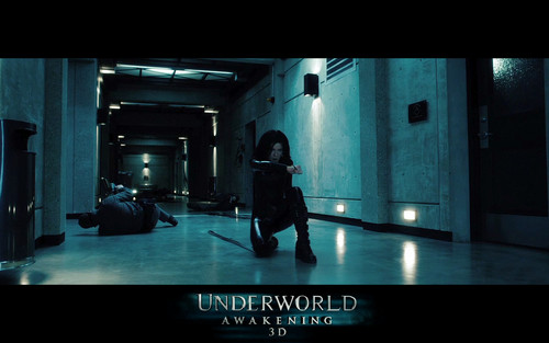 アンダーワールド 壁紙 possibly with a sign, a concert, and a revolving door entitled Underworld: Awakening Selene