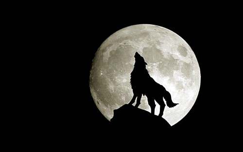 Fantasy wallpaper entitled Wolf Moon