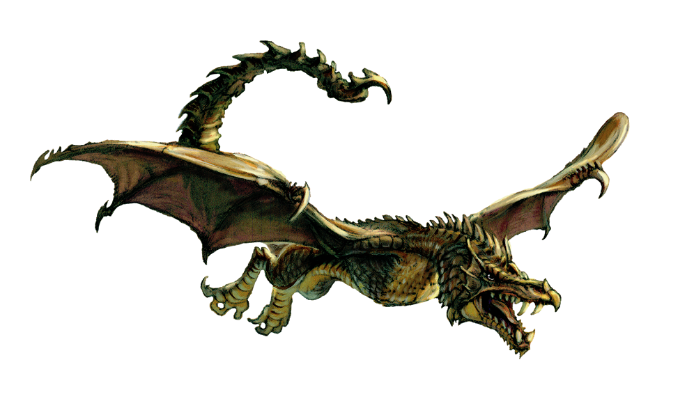 Mythical Creatures Images Wyvern HD Wallpaper And