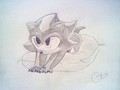 baby shadow X3 - shadow-the-hedgehog photo