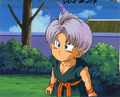 cuuute trunks
