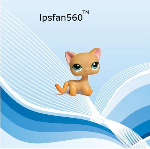 lpsfan560