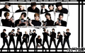suju a-cha - k-pop-boy-bands wallpaper