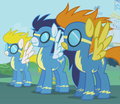 the first 3 ponys of the wonder bolt team