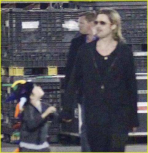 Angelina Jolie & Brad Pitt: Cirque du Soleil Family Trip!