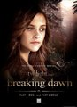 Bella's Breaking Dawn