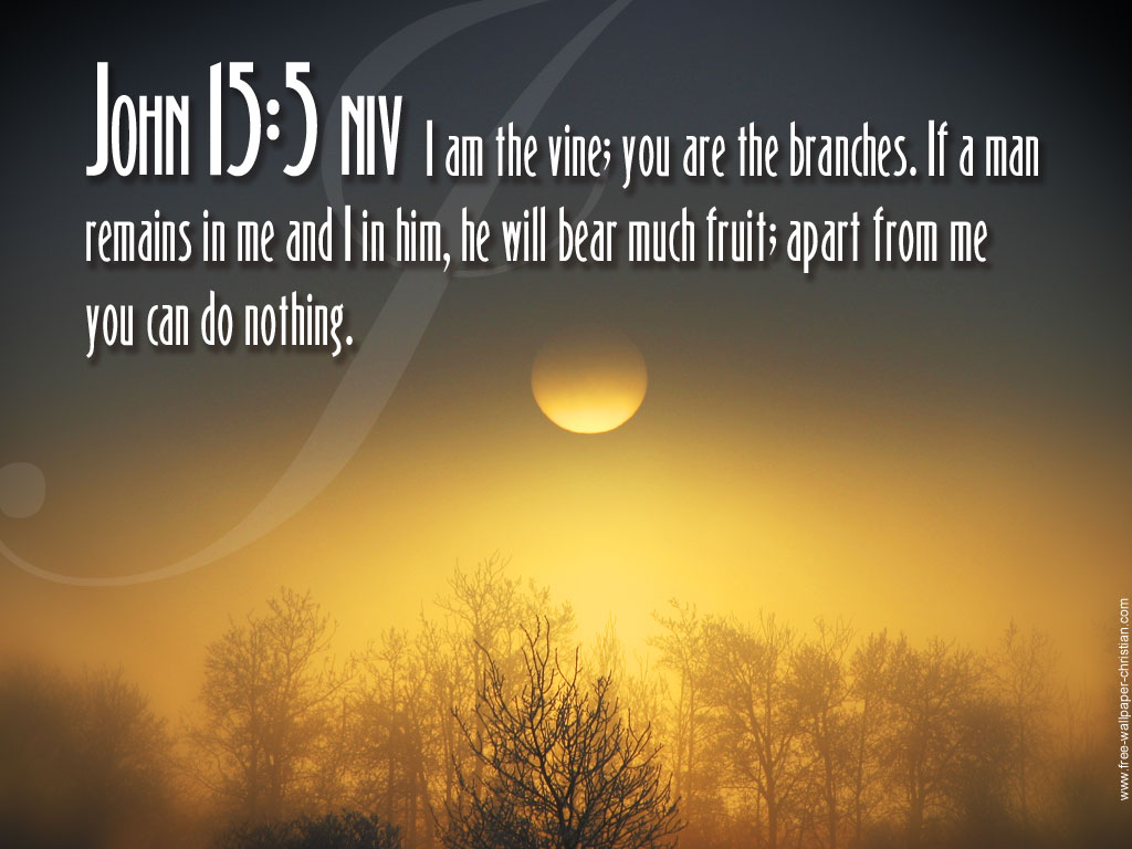 God Images Bible Quotes HD Wallpaper And Background Photos