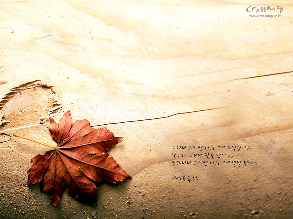 Bible quotes - God Wallpaper (28790133) - Fanpop