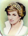 Diana, Princess of Wales - princess-diana fan art