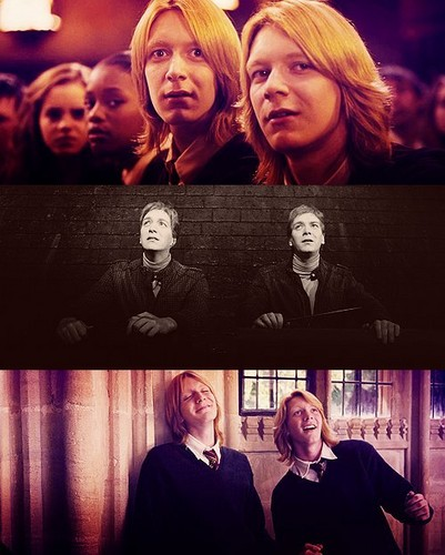 Fred and George Weasley wallpaper possibly containing a sign and a portrait entitled F/G