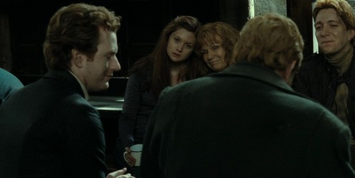 Family Weasley DH part 2