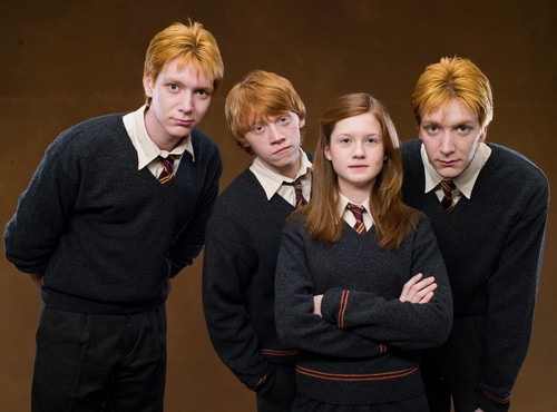 Fred, George, Ginny, Ron HP 5