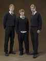 Fred, Ron and George Weasley