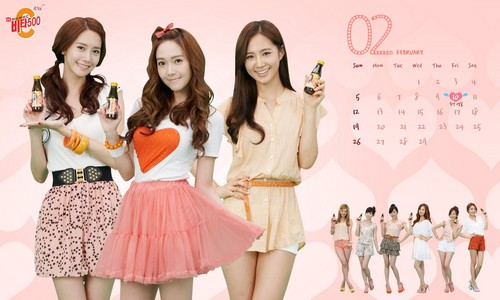 Girls' Generation Vita500 February 2012 calendar