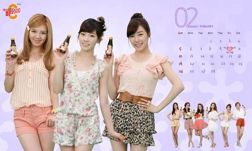 Girls' Generation Vita500 February 2012 calendar