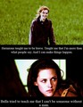 HP VS TWILIGHT