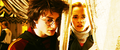 Harry and Hermione - harry-potter screencap