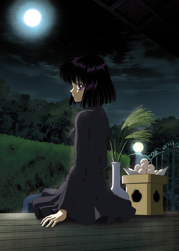 Sailor Saturn wallpaper containing a well dressed person and a business suit entitled Hotaru