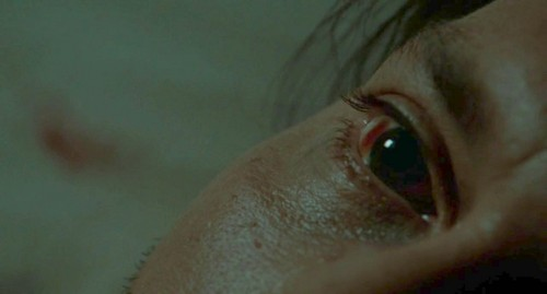 JD美 Johnny's eye