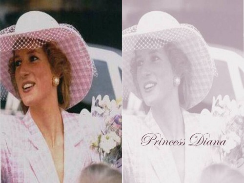 Prinzessin Diana Hintergrund with a snap brim hat, a boater, and a campaign hat titled Lady Di Hintergrund