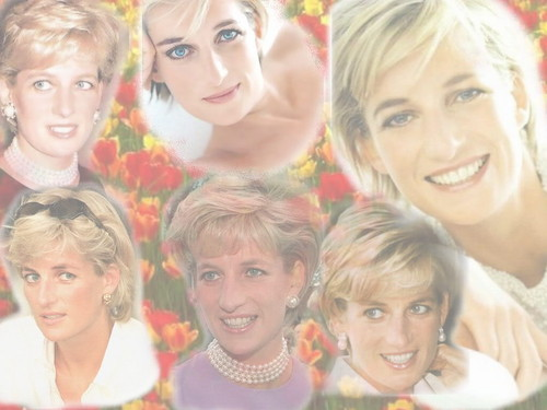 Lady Di achtergrond