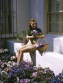 In The Garden - classic-movies photo