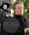 Minerva - professor-mcgonagall photo