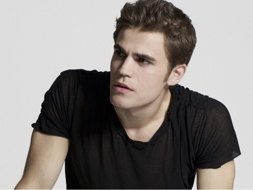 Paul Wesley wallpaper probably containing a portrait titled Paul Wesley