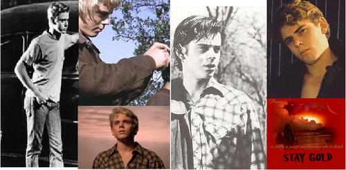 Ponyboy Pictures