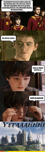 Quidditch Innuendos