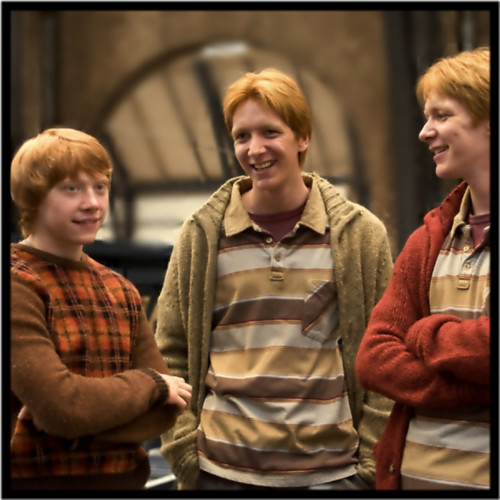Ron, Fred and George