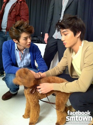 W Live Se Hun & KAI - exo-m Photo