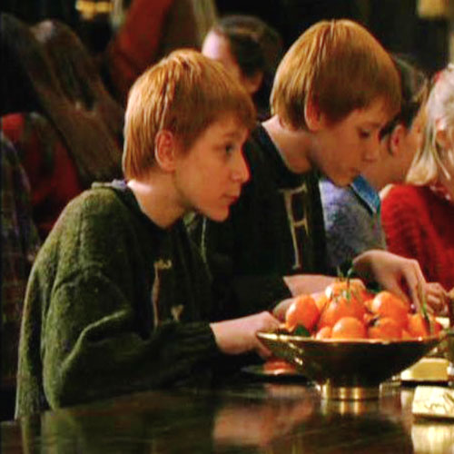 fred and George HP 1