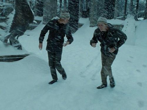 fred e george weasley