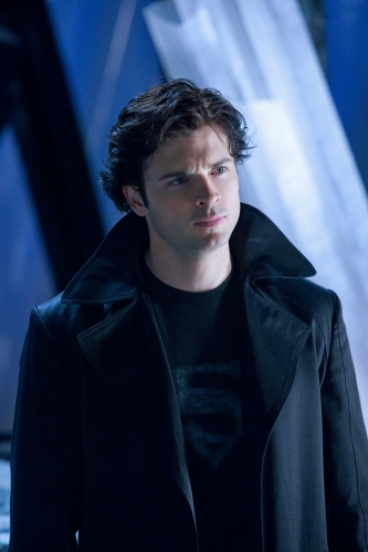 Tom Welling wallpaper probably with a well dressed person called smallville