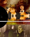 """Everything was supposed to be to keep Lily Potter 's son safe"" - severus-snape-and-lily-evans fan art"