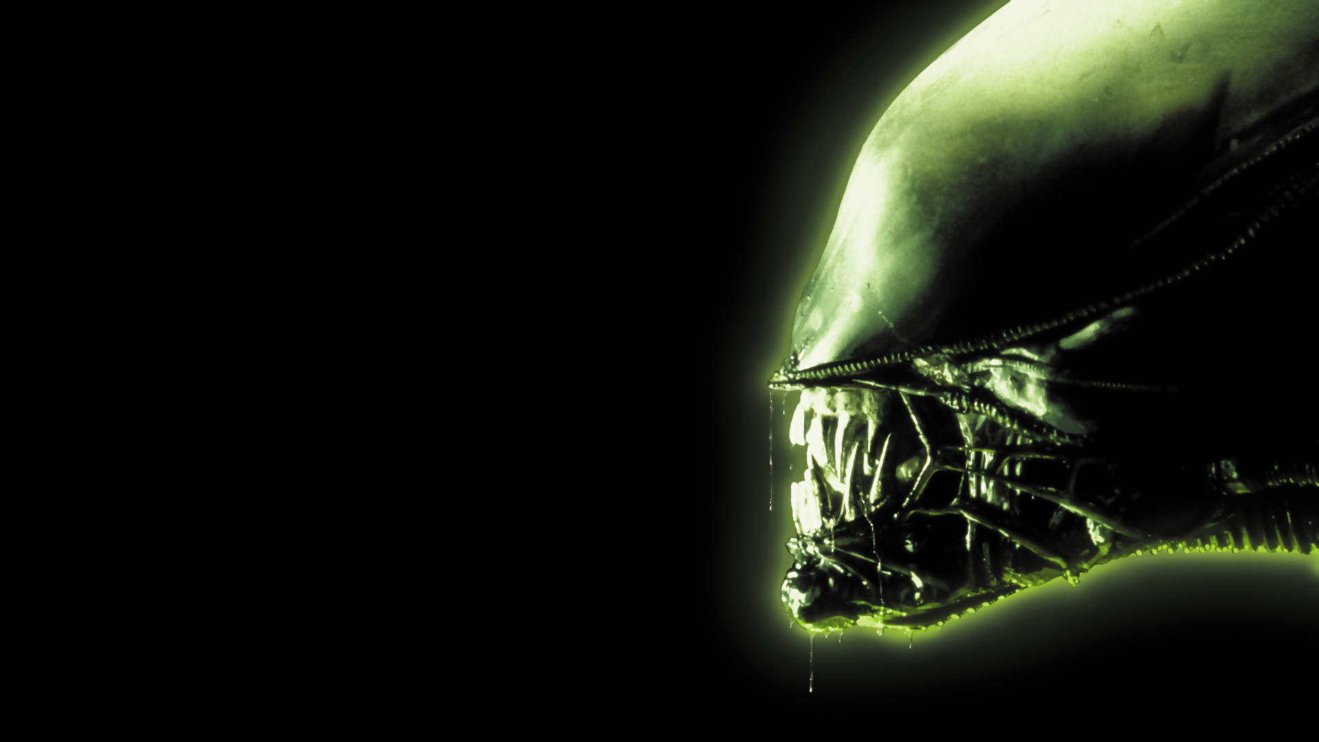 alien images alien hd wallpaper and background photos 28809935