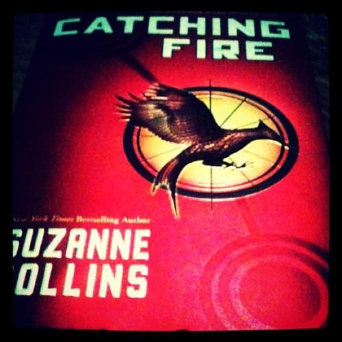 Amazing Hunger Games shabiki Arts!