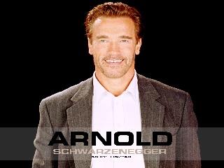 Arnold Schwarenegger karatasi la kupamba ukuta