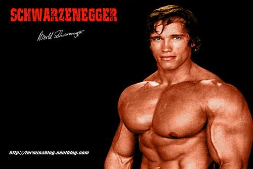 Arnold Schwarenegger Hintergrund